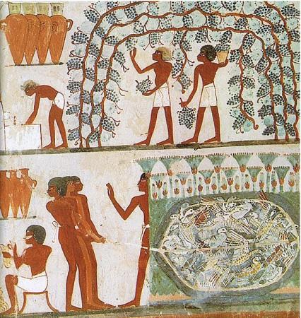 Uprawa winorośli, produkcja wina i handel nim na egipskim obrazie datowanym na 1500 p.n.e.