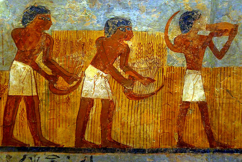 Malowidło z grobowca egipskiego jest datowane na czasy panowania Totmesa III (1450p.n.e.) Więcej o nim przeczytacie na stronie Luvru tu na licencji Creative Commons