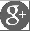 sz-logo-g
