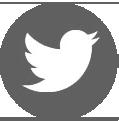 sz-logo-t